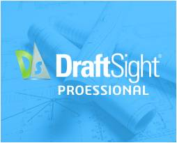 DraftSight Professional Logo